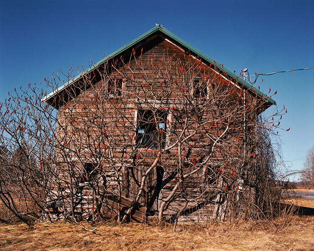 Collapsing Barn with Sumac Trees, Kinderhook, New York, 2016