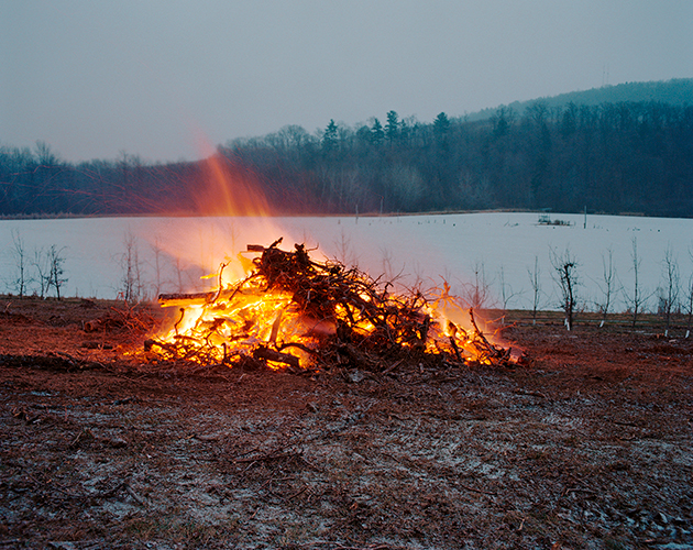 Orchard Burning, Livingston, New York, 2016