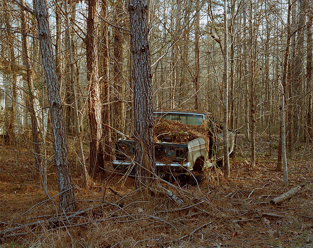 Car in Woods, William Faulkner Memorial Highway, Mississippi, 2018