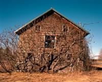 Collapsing Barn with Sumac Trees, Kinderhook, New York, 2016 thumbnail
