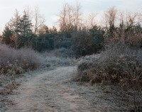 Winter Path, Livingston, New York, 2016 thumbnail