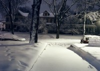 Front Yard, Minneapolis, Minnesota, 2003 thumbnail