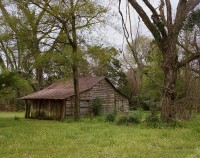 Barn, Monroeville, Alabama,2019 thumbnail