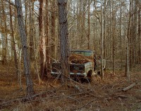 Car in Woods, William Faulkner Memorial Highway, Mississippi, 2018 thumbnail