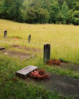 Wards Chapel Cemetery where Alice Walker's Parents and Ancestors are Buried, Eatonton, Georgia, 2020 thumbnail